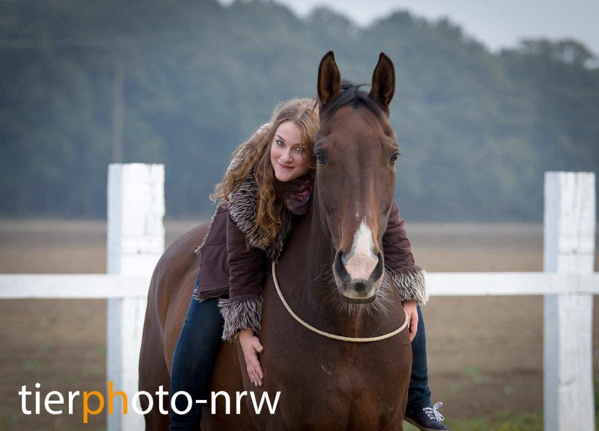Fotoshooting Pferd