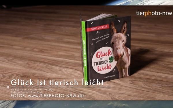 Tierfotografie Coppenrath-Verlag Tierphoto-NRW