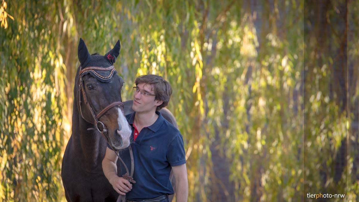 Pferdebilder mit Reiter