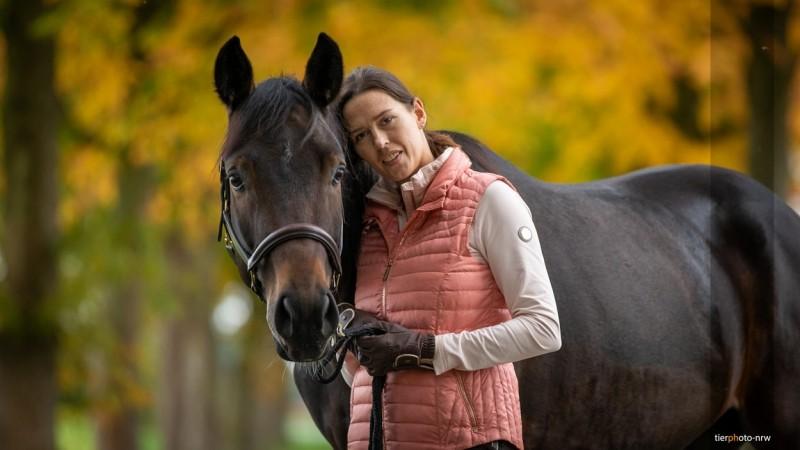 Herbstbild mit Pferd
